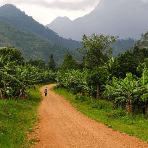 Uganda-pearl-climate2