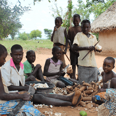 Uganda pearl - economics